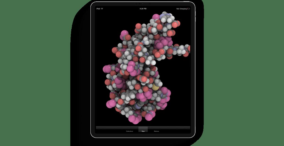 Molecular-iPad main