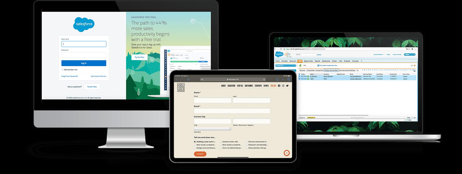 Kalu-Yala-Salesforce solution